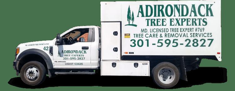 Truck Lettering - Adirondack Tree Experts